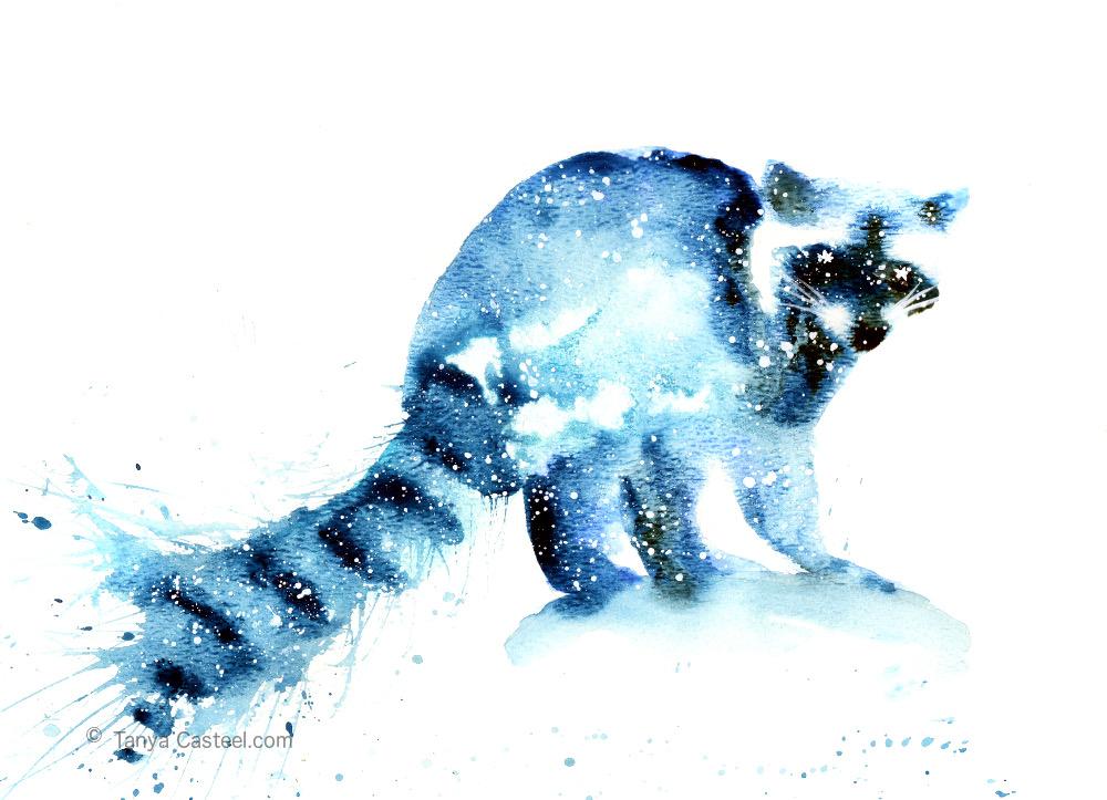 raccoon spirit animal