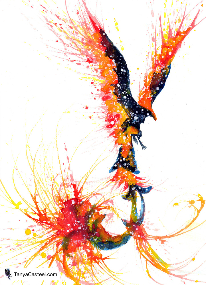 Phoenix Spirit Animal Meaning Cosmic Animal Meaning Medicine Magic