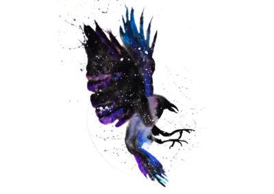 Raven / Crow