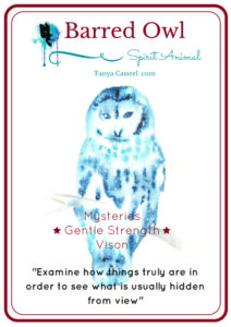 barred owl spirit animal symbolism