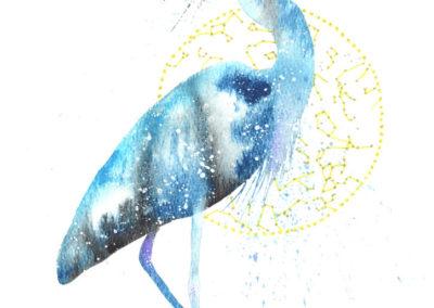 Blue Heron / Egret