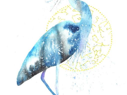 Blue Heron & Egret