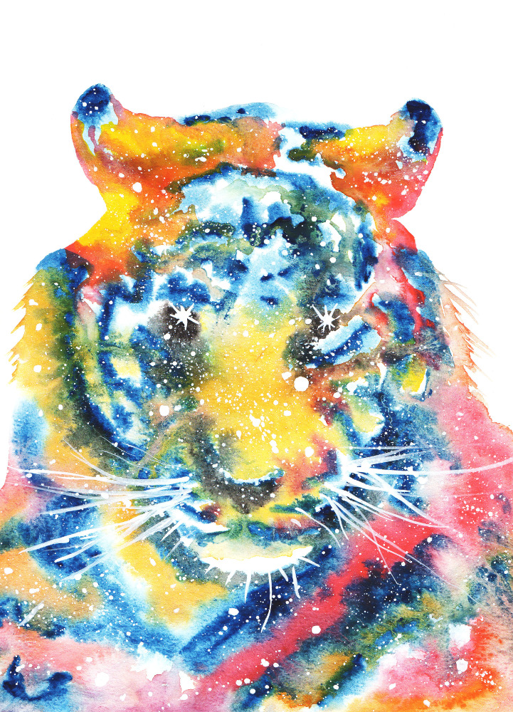 Tiger Cosmic Animal Meaning Medicine Magic