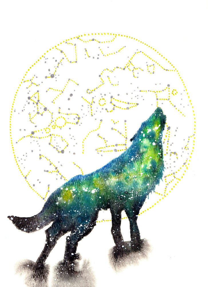 Wolf Cosmic Animal Meaning Medicine Magic