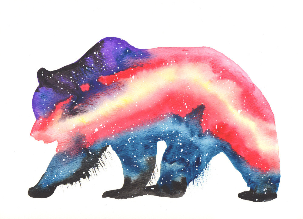 Bear Cosmic Animal Meaning Medicine Magic