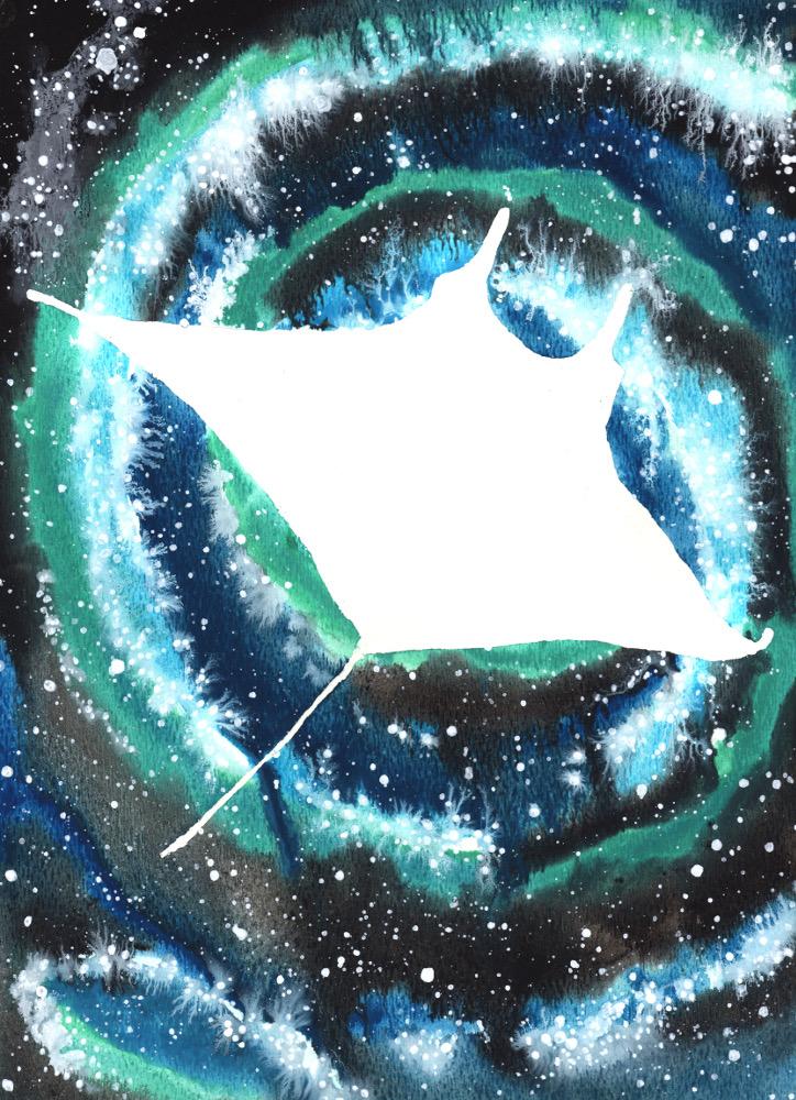 Manta Ray Cosmic Animal Meaning Medicine Magic