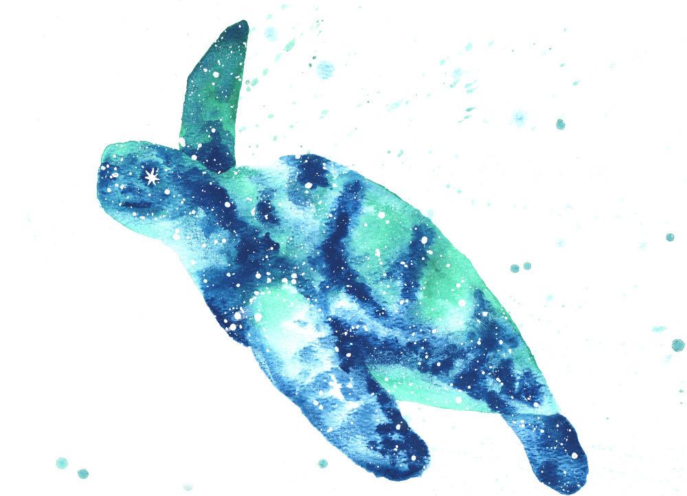 Sea Turtle Animal Symbolism Best Turtle 2018