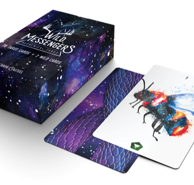 Wild messengers tarot card reading