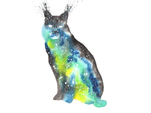 Bobcat & Lynx