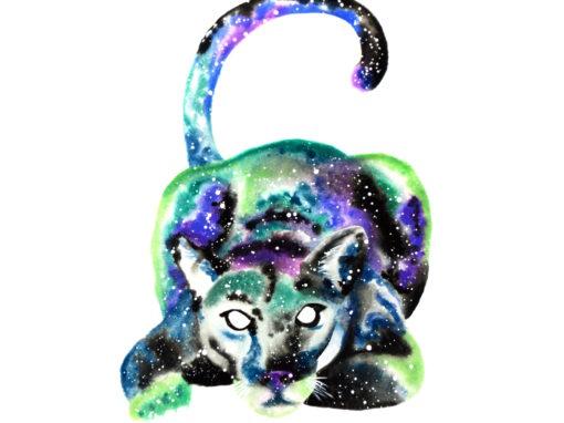 Puma & Cougar