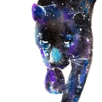 panther spirit animal meaning and painting wall art