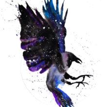 raven crow spirit animal