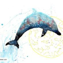 dolphin spirit animal meaning